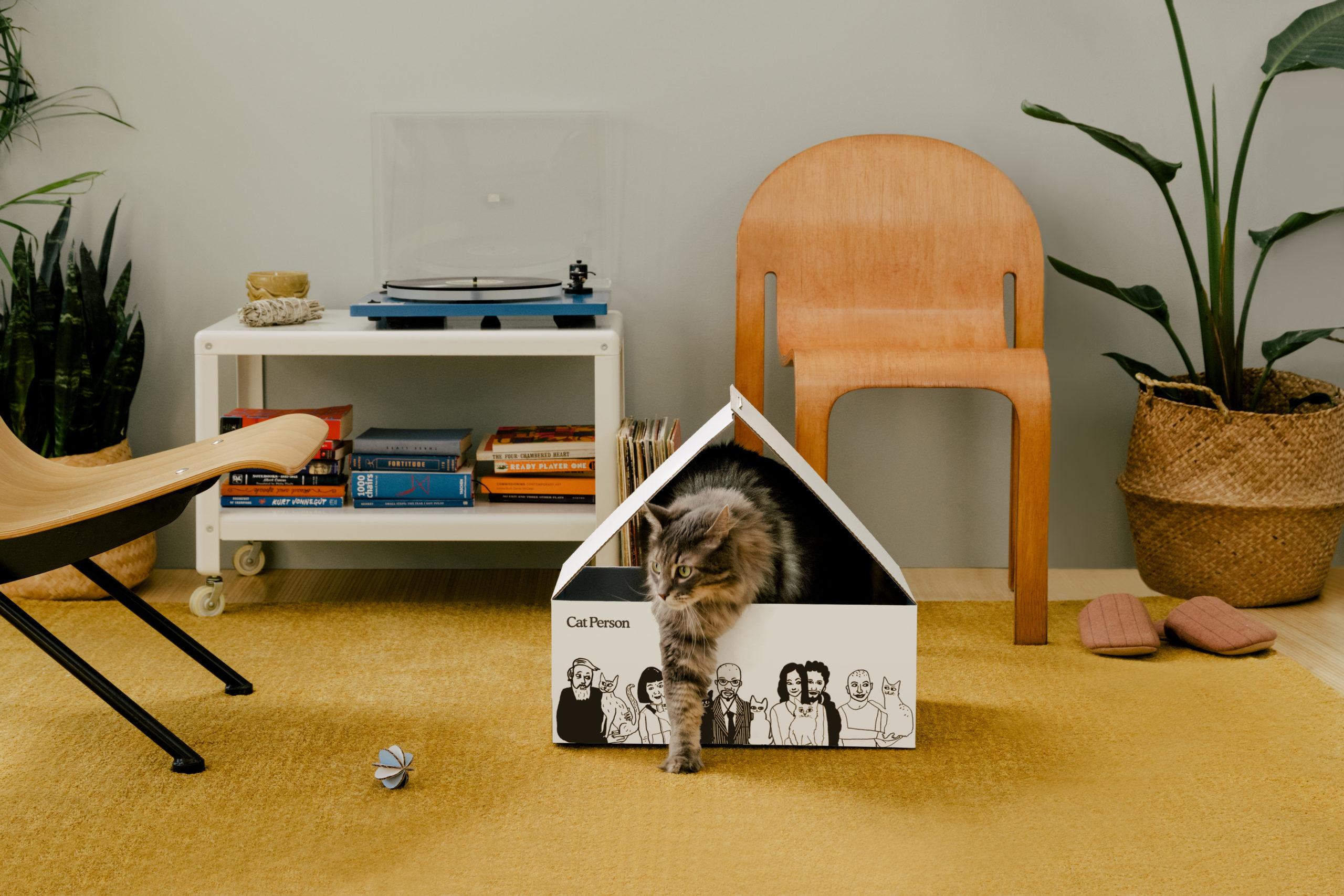 19_11_05 Cat Person_CAT BOX_013